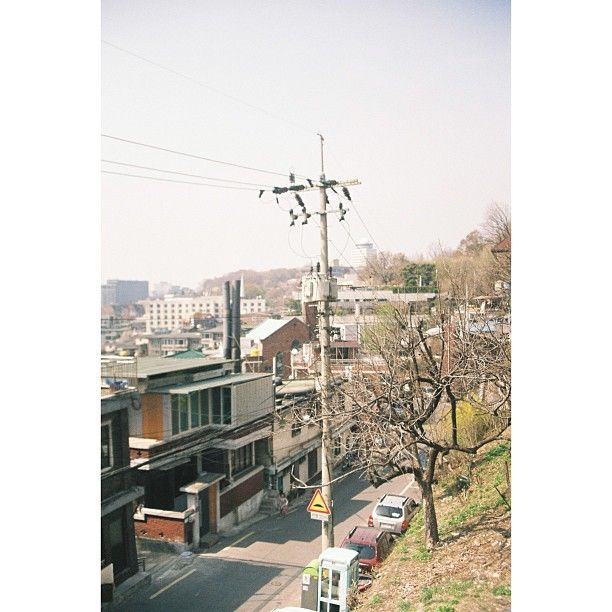 hstranger_ / 옛날 옛적 봄 사진 #봄 #film #필카 #x300 / #골목 #식물 #비탈 #동네 /