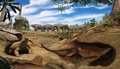 """""""O Grito do Bicho"""": Paleontólogos descobriram porque as tartarugas tem..."""