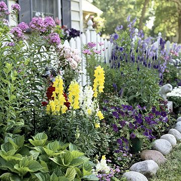 Front Yard ColorPicket Fences, Gardens Ideas, Rocks Border, Cottages Gardens, Rivers Rocks, Country Gardens, Front Yards, Flower Beds, White Picket Fence