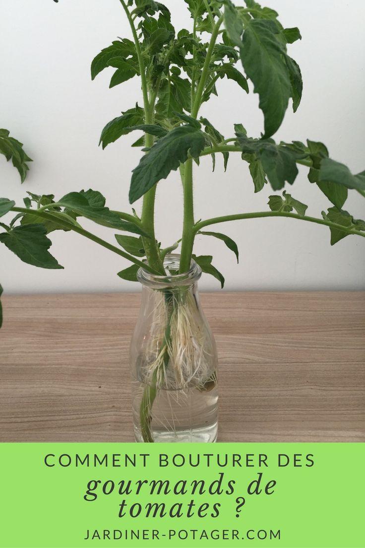 25 best ideas about potager bio on pinterest potager. Black Bedroom Furniture Sets. Home Design Ideas