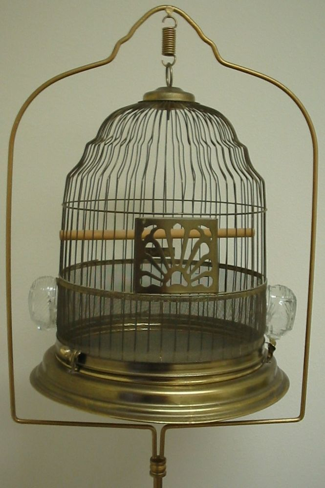 25 best ideas about bird cage stand on pinterest antique bird cages bird cages for less and. Black Bedroom Furniture Sets. Home Design Ideas