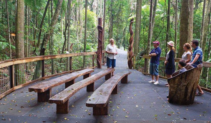 Sea Acres Rainforest boardwalk, Sea Acres National Park. Photo: Rob Cleary