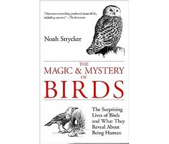 The Magic & Mystery Of Birds is a non-fiction book which studies bird behaviour. The easy to read book compares many different birds with similar human characteristics through scientific experi...