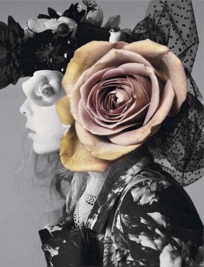 Jalouse February 2012: Rosebud