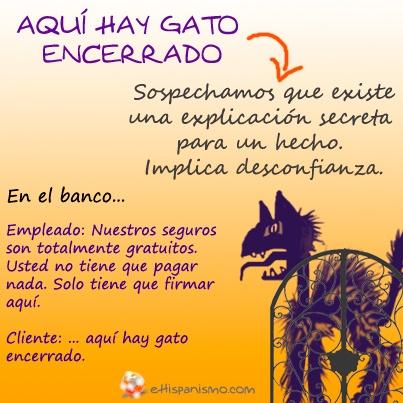 """La fraseología que emplea nombres de animales es un clásico en lengua española. Hoy os presentamos la expresión: """"aquí hay gato encerrado""""."""
