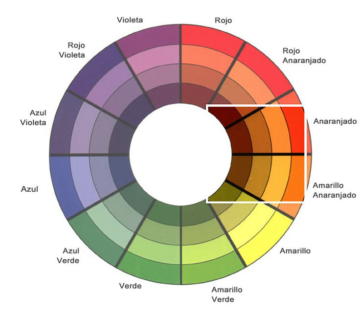 ¿CÓMO MAQUILLAR OJOS MARRONES?   Colores que favorcen para un look casual.