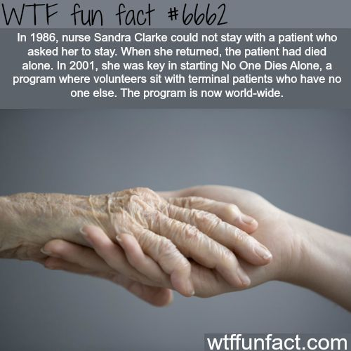 No One Dies Alone - WTF fun fact