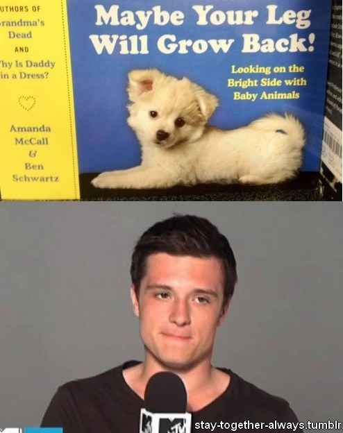This sad moment for Peeta | 27 Hunger Games Puns You Can't Help But Laugh At
