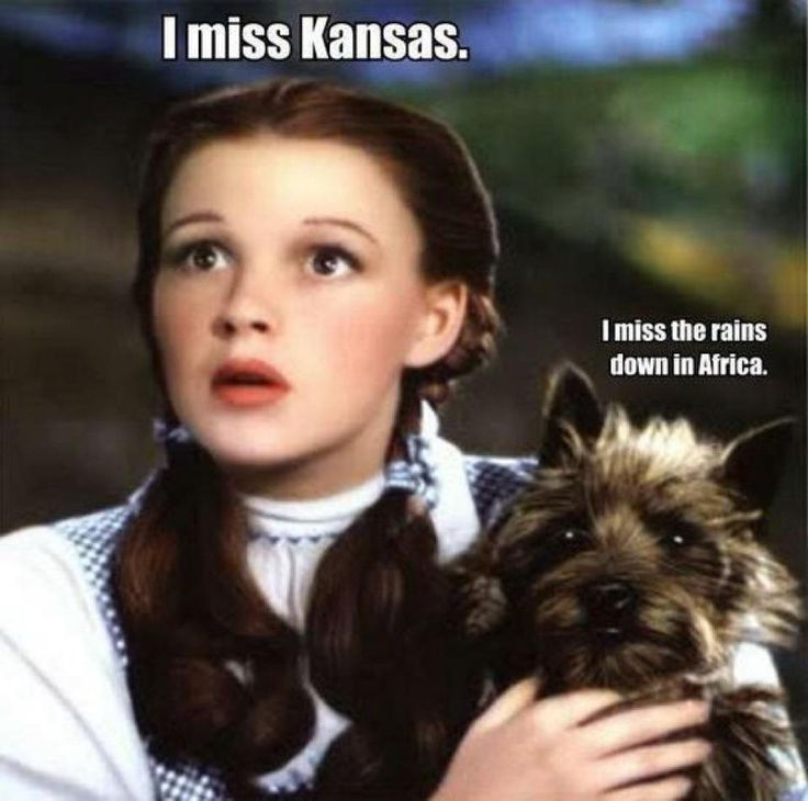 Kansas and Africa. I don't care what anybody says, Dorothy is a superhero. And so's Toto.