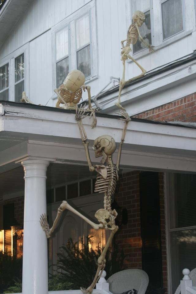 Creative use of Skeleton Halloween Decorations. I seriously need 3 of these! I can have so much fun! lol