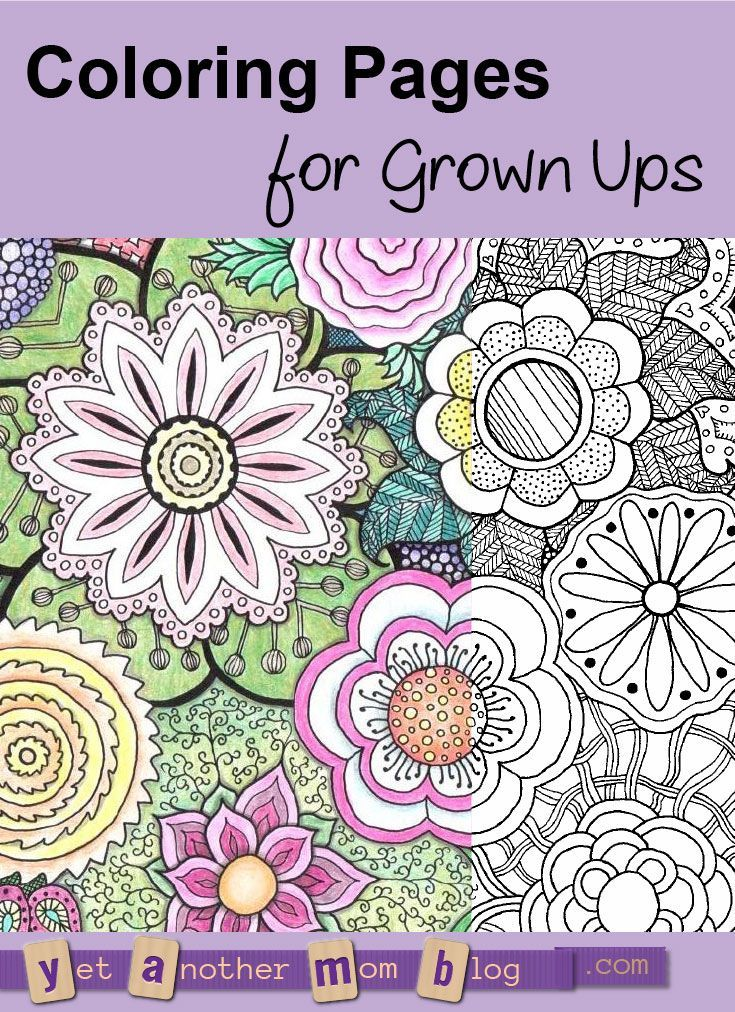 Adult Coloring Pages: Zentangle Flowers. Interesting designs to color for grown ups, a creative indoor winter activity!