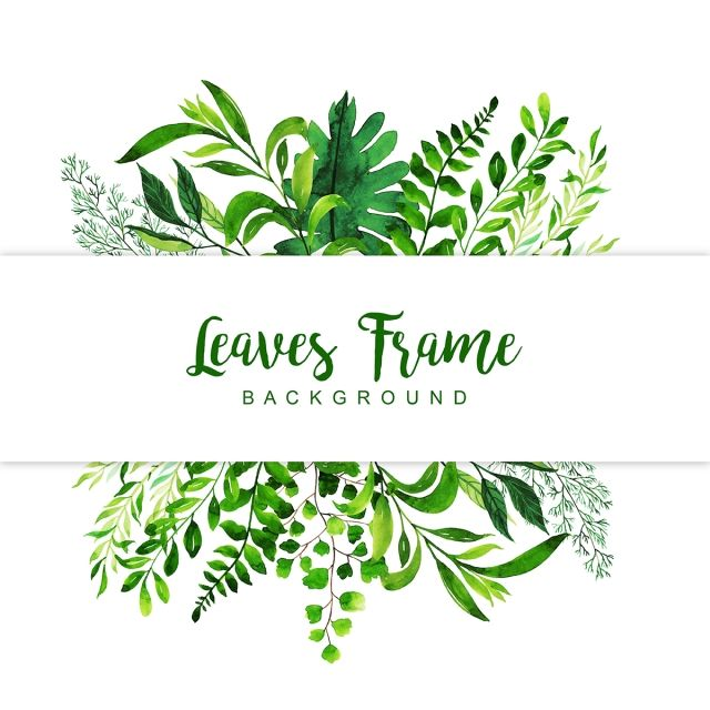 Leaves Background Color Colorful Colored Png And Vector With Transparent Background For Free Download 수채화 잎 꽃 그리는 법 배경