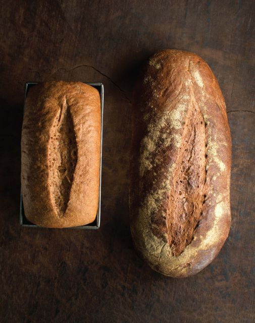 ancient grains and sprouted flours: 'bread revolution,' with peter reinhart; BREV Sprouted Whole Wheat Bread image p 62