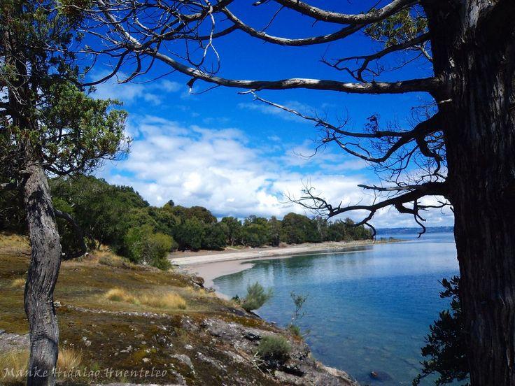 Lago Ranco,Chile
