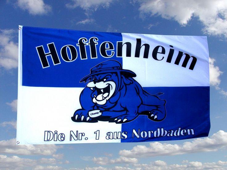 TSG 1899 Hoffenheim bilder, TSG 1899 Hoffenheimbild und foto - Fußball Bilder