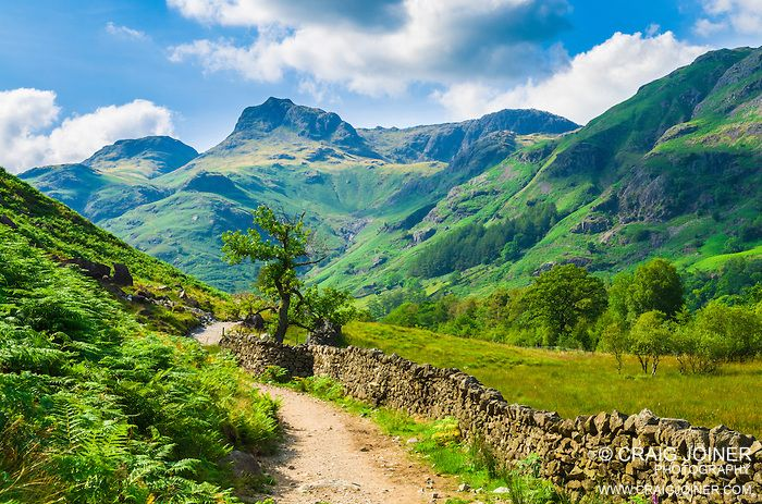 Great Langdale Valley looking towards the Langdale Pikes in the English Lake District near Chapel Stile, Cumbria, England.