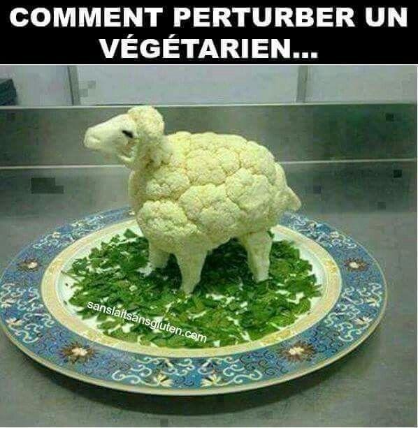 Comment perturber un végétarien ?