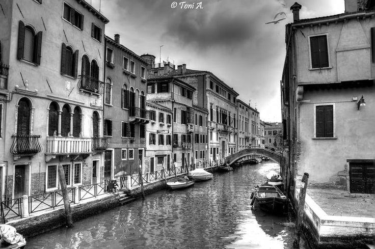 #instagram Venice (8) by Toni A. #instaration #photography #photooftheday #foto