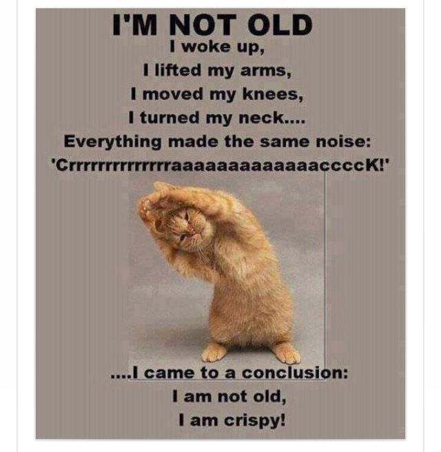 Funny Old People Jokes More Funny Messages Old Age Ecards: 17 Best Images About Senior Humour On Pinterest