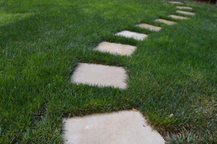 Walk his way into my lovely Algarve garden #Portugal #Algarve #gardens