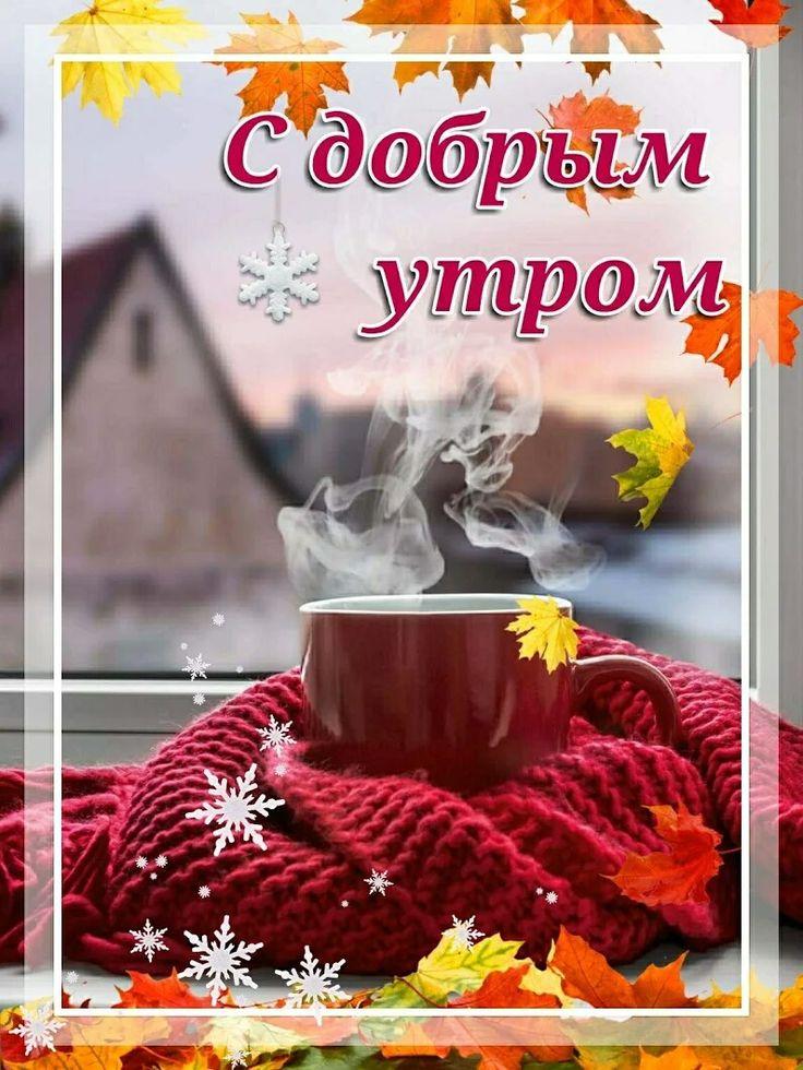 человека с добрым ноябрьским утром осенне-зимние картинки тоже