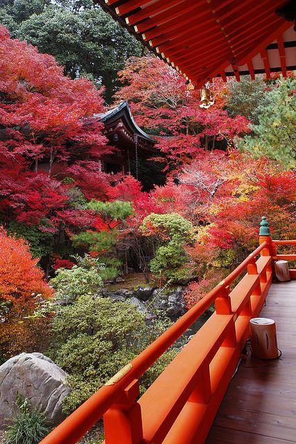 garden...Kyoto