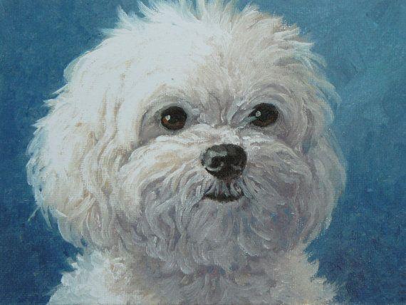 Maltese Portrait Dog Portrait Maltese Dog Print by MeliaArts, $12.00 (+s/h)