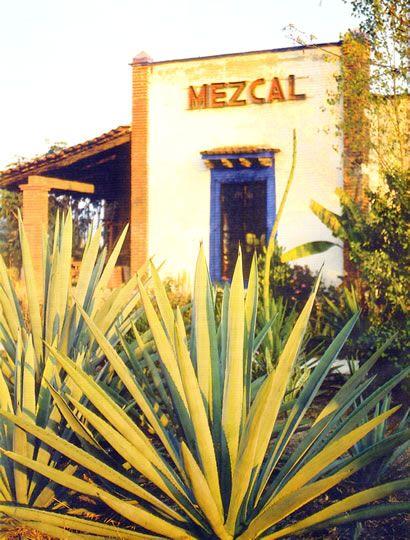 ¡Oaxaca por supuesto! Para todo mal, Mezcal. Para todo bien, también