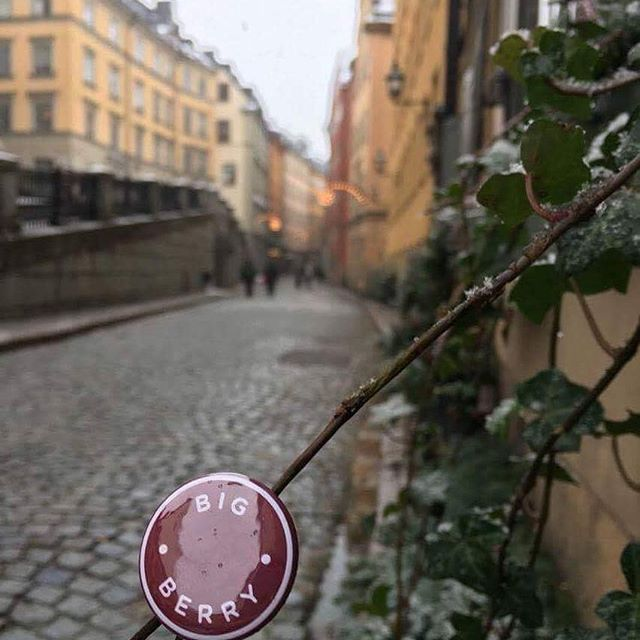 While preparing for #traditional #Lucia dinner on the 13th of December, a walk through the Christmas market in Gamla Stan, old city #center of #Stockholm brings out the #Christmas spirit. ✨🎄     #berry_tale #sweden #christmas #christmastree #christmas2016 #christmasmarket #winter #merrychristmas #fair #family #december #winteriscoming