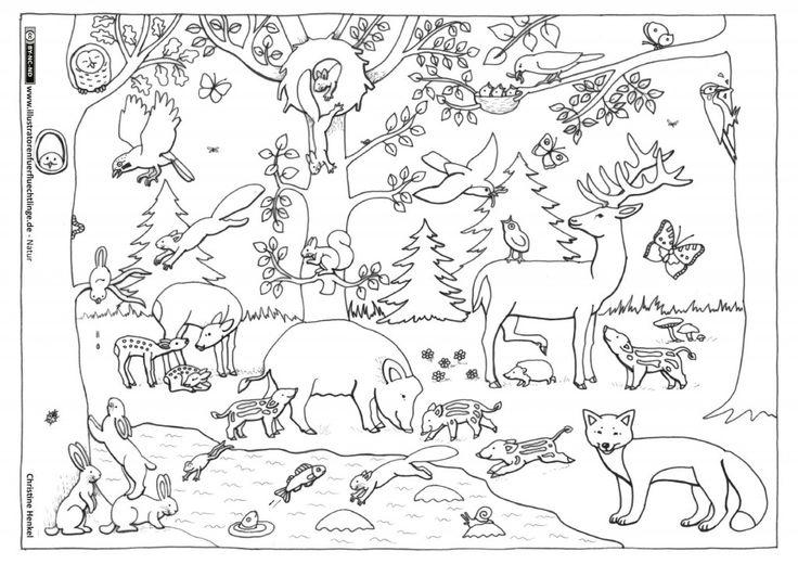 natur wald tiere henkel ausmalbilder herbsttiere kindergarten malvorlagen und. Black Bedroom Furniture Sets. Home Design Ideas