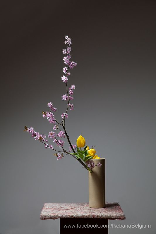 I am very lucky. Ilse made some cherry blossom ikebana arrangements in our living room.  And now I can do some hanami from my couch, enjoying some food and drinks.  But I decided to skip the karaoke.     Ikebana: Ilse Beunen  Photography: Ben Huybrechts   Material: Prunus and tulips