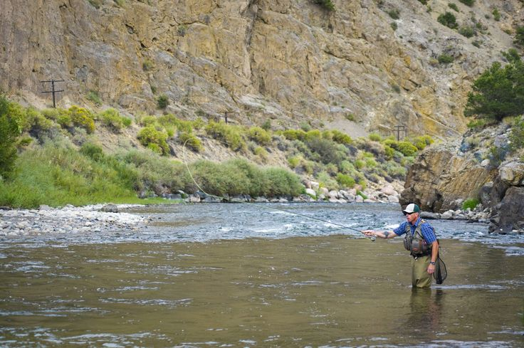 103 best images about fly fishing a great love of mine for Fly fishing arkansas