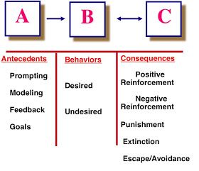 I Love ABA!: The Basics: Operant Conditioning