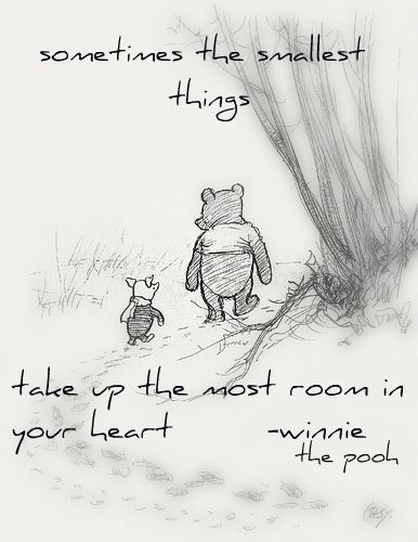 Sometimes the smallest things... - Winnie the Pooh