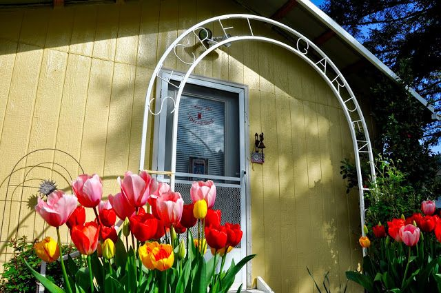 LuAnn Kessi: Tulips by Thread Shed