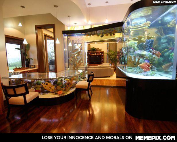 Living Room Decorating Ideas Fish Tank 157 best design aquariums images on pinterest | aquarium ideas
