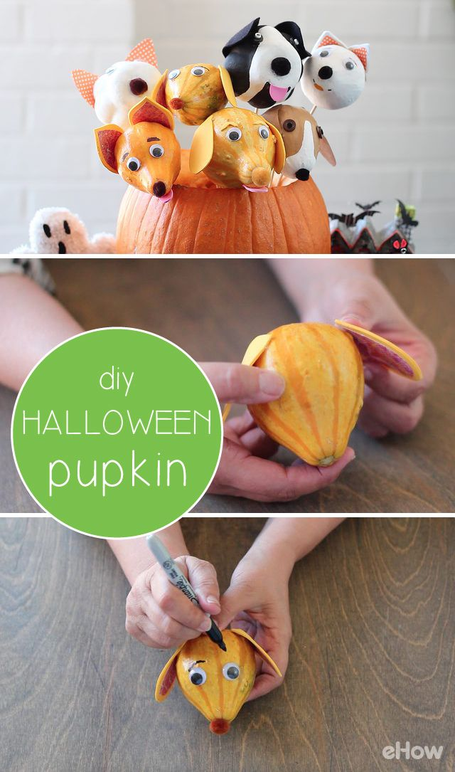 Need a quick Halloween craft for the kids, or a cute piece of decor that won't break the bank? Make pupkins! You can create one in as little as 5 minutes, using gourds from the grocery store and a few other things you probably have around the house right now. http://www.ehow.com/how_12343572_diy-halloween-pupkin.html?utm_source=pinterest.com&utm_medium=referral&utm_content=freestyle&utm_campaign=fanpage