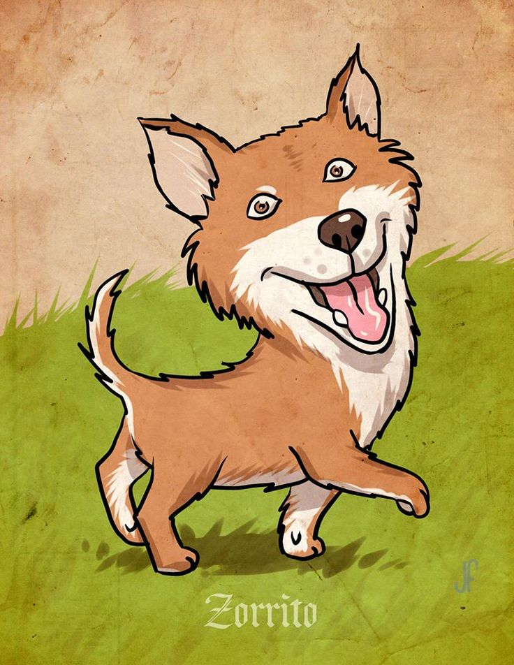 Zorrito Dog search home