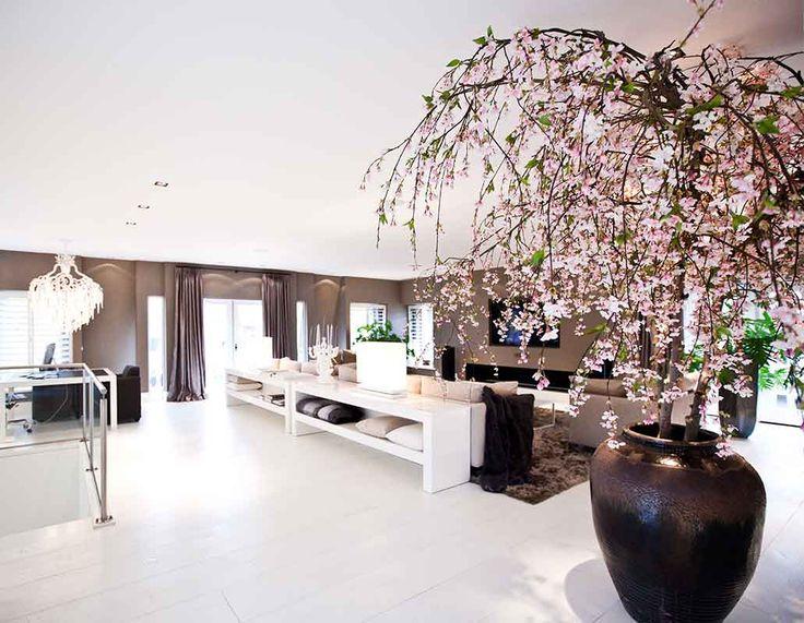 58 best Jan des Bouvries images on Pinterest   Exterior design, Home ...