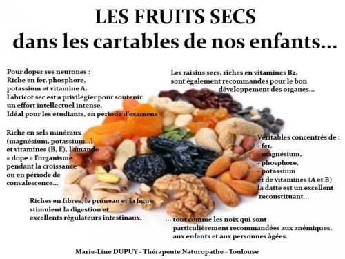 Fruits secs bienfaits