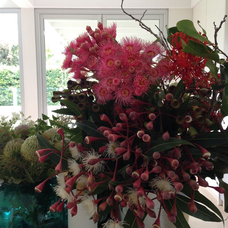 Delivery of Australian botanicals for the photoshoot
