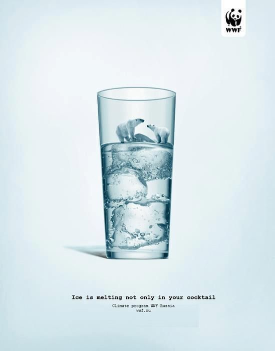 """""""Ice is melting not only in your coktail"""" - Un message fort pour alerter sur le réchauffement climatique - Campagne de communication pour la protection de l'environnement #WWF"""