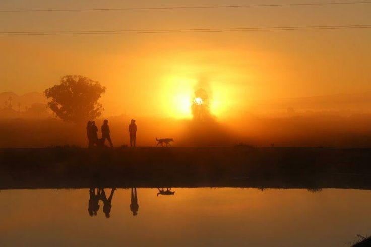 Vriende kuier op die damwal -  photo: Elmar J Roetz