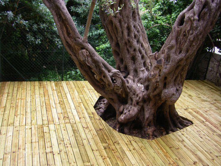terrasse au sol en bois résineux  exterieur  Pinterest