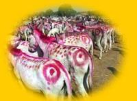 Vautha Fair
