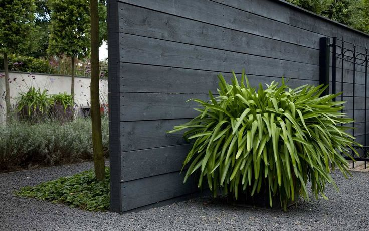 Dark gray fence
