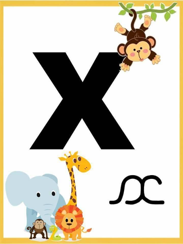 Alfabeto Com Letra Bastao E Cursiva Alfabeto Ilustrado Para