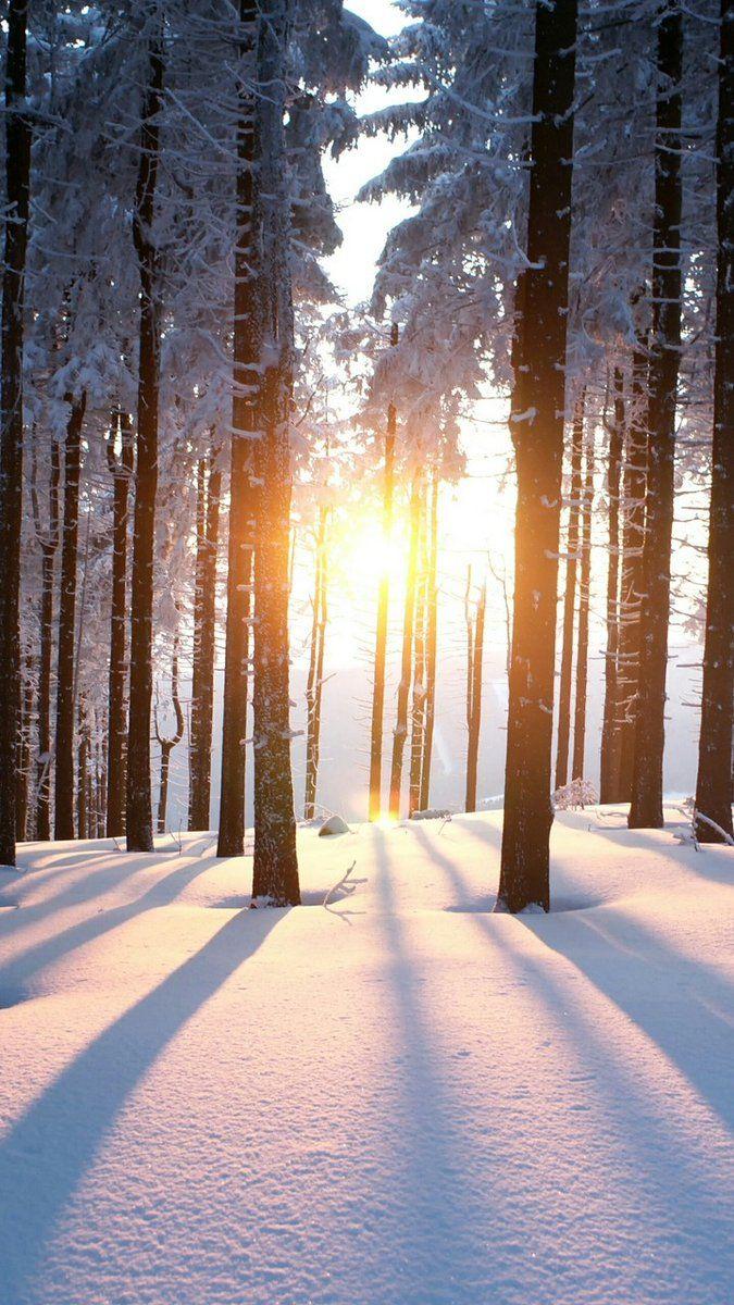 Winter morning sunrise...