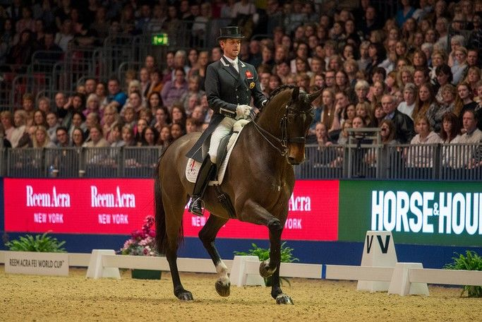 Equestrian coaches and horses round the world have much for which to thank Carl Hester. All coaches need verification of their methods to sell their training ideas, and what easier sell is there than to