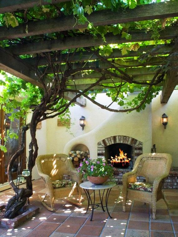 10 climbing plants for pergola: dreamlike seating arrangements in the garden